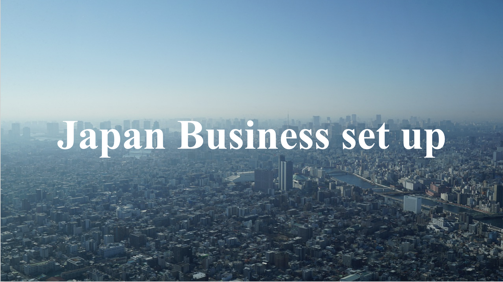 Japan Business set up