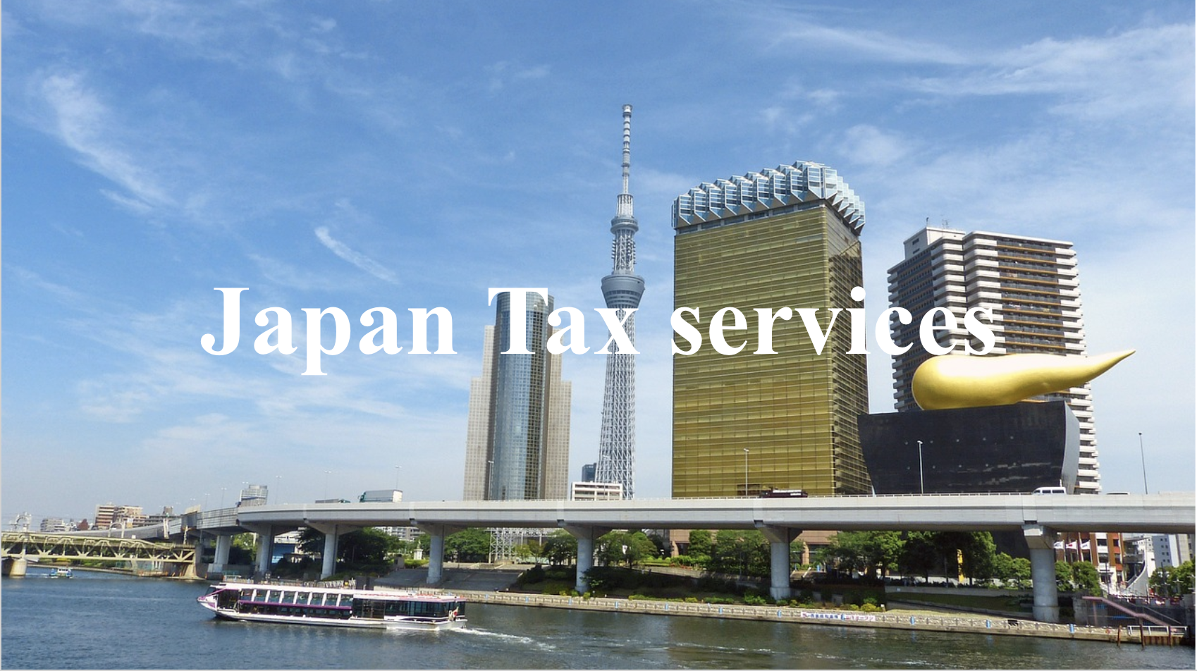 Japan Tax services