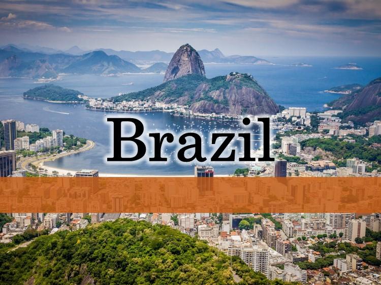 ブラジル拠点